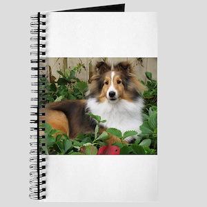 Strawberry Patch Journal