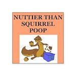nutty squirrel poop Square Sticker 3