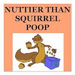 nutty squirrel poop Square Car Magnet 3