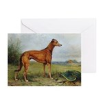 Greyhound In The Field Cards 20PK