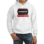 got Kirtan? Hooded Sweatshirt