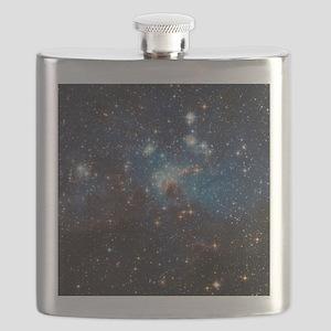 LH95 Stellar Nursery Flask