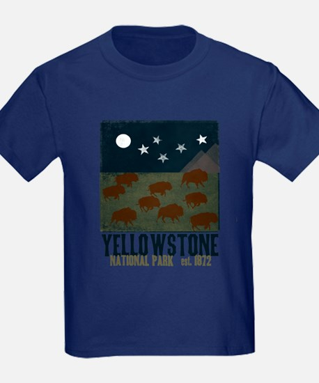 Yellowstone Park Night Sky T