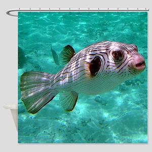 Striped Puffer Fish Shower Curtain
