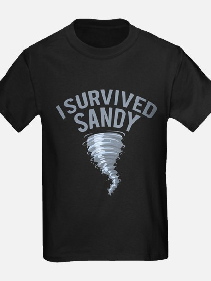 I Survived Hurricane Sandy T