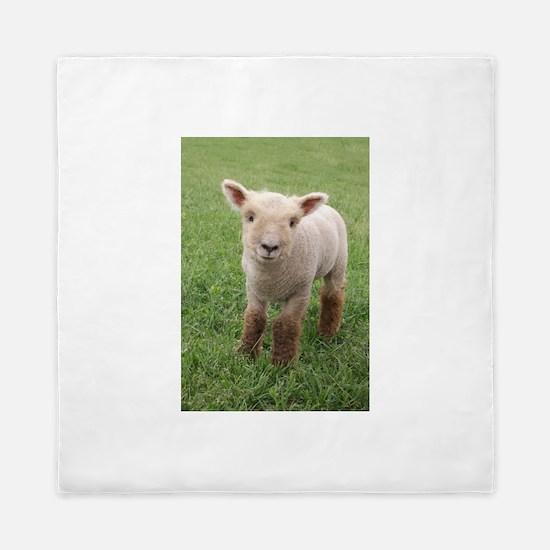 Sweet Lamb Queen Duvet