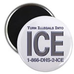 TURN ILLEGALS INTO ICE - Magnet
