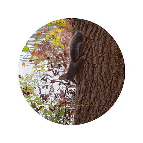 "Squirrel 3.5"" Button (100 pack)"