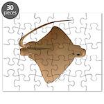 Bat Ray Puzzle