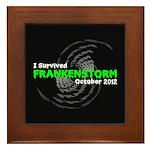 Frankenstorm Framed Tile