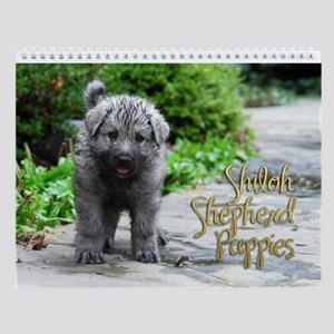 2013 Shiloh Puppy Wall Calendar