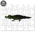 Caiman Puzzle