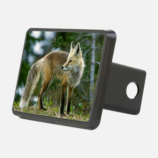 Cascade red fox - Hitch Cover