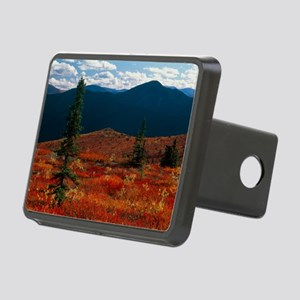 Coniferous trees - Hitch Cover