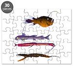 Deep Sea Fish Teeth Puzzle
