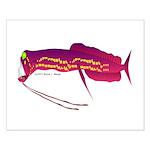 Deep Sea Dragonfish Small Poster