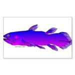 Coelacanth Sticker (Rectangle 10 pk)