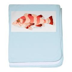 Copper Rockfish fish baby blanket