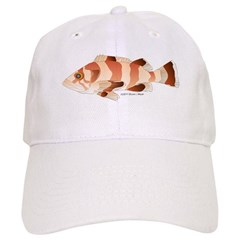 Copper Rockfish fish Baseball Cap