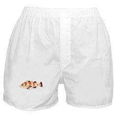 Copper Rockfish fish Boxer Shorts