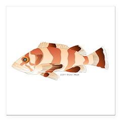 Copper Rockfish fish Square Car Magnet 3