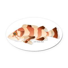 Copper Rockfish fish Oval Car Magnet