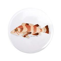 Copper Rockfish fish 3.5