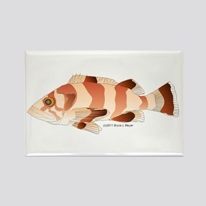 Copper Rockfish fish Rectangle Magnet