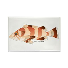 Copper Rockfish fish Rectangle Magnet
