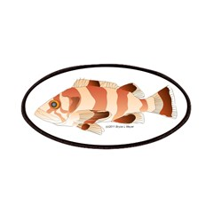 Copper Rockfish fish Patches