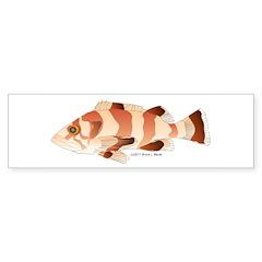Copper Rockfish fish Sticker (Bumper 10 pk)