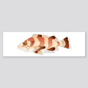 Copper Rockfish fish Sticker (Bumper)