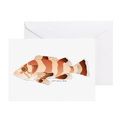 Copper Rockfish fish Greeting Card