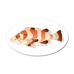 Copper Rockfish fish Wall Decal