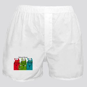 Retired Nurse Blanket CATS Boxer Shorts
