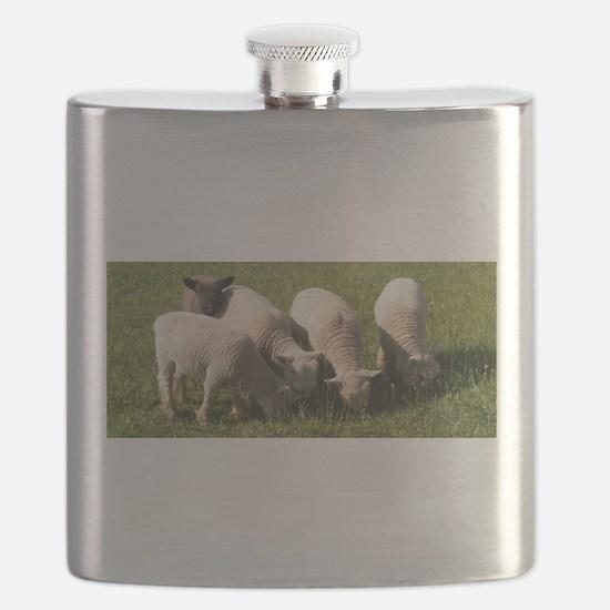 Me Too! Flask