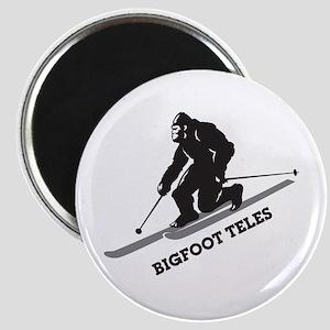 Bigfoot Teles Magnet
