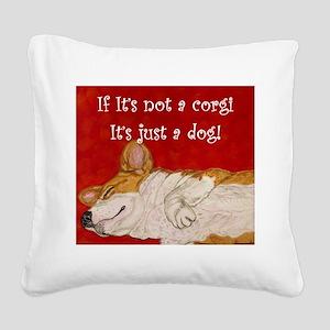 If it's not a corgi.. Square Canvas Pillow