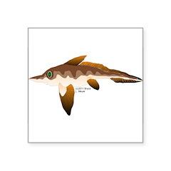 Longnosed Ratfish (Chimera) Square Sticker 3
