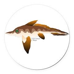 Longnosed Ratfish (Chimera) Round Car Magnet