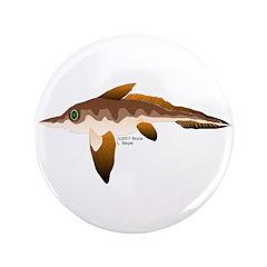 Longnosed Ratfish (Chimera) 3.5