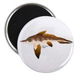 Longnosed Ratfish (Chimera) Magnet