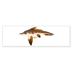 Longnosed Ratfish (Chimera) Sticker (Bumper 10 pk)
