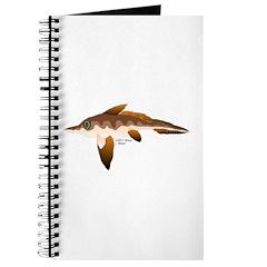 Longnosed Ratfish (Chimera) Journal