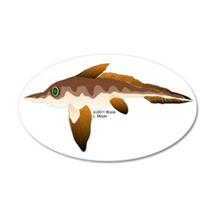 Longnosed Ratfish (Chimera) Wall Decal
