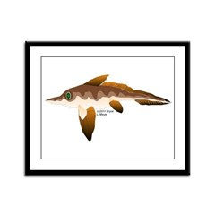 Longnosed Ratfish (Chimera) Framed Panel Print