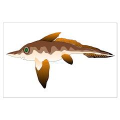 Longnosed Ratfish (Chimera) Posters