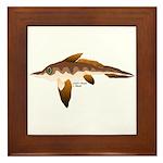 Longnosed Ratfish (Chimera) Framed Tile