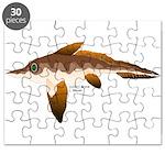 Longnosed Ratfish (Chimera) Puzzle