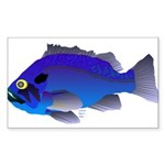 Blue Rockfish (Blue Perch) Scorpionfish fish Stick